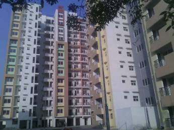 1100 sqft, 2 bhk Apartment in LDA Sopan Enclave Aashiyana, Lucknow at Rs. 55.0000 Lacs