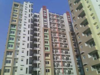 1300 sqft, 3 bhk Apartment in LDA Sopan Enclave Aashiyana, Lucknow at Rs. 63.0000 Lacs
