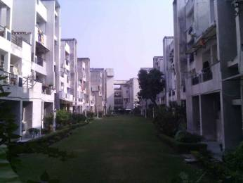 1400 sqft, 3 bhk Apartment in Builder SRI NATH JI VIHAR Nirala Nagar, Lucknow at Rs. 60.0000 Lacs