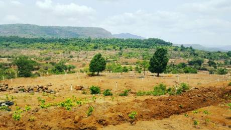 850 sqft, Plot in Green Morya Pali, Raigad at Rs. 4.6755 Lacs