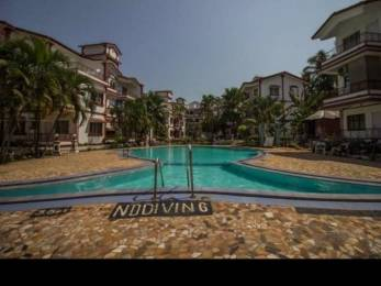 650 sqft, 1 bhk Apartment in Builder Project Calangute, Goa at Rs. 22000