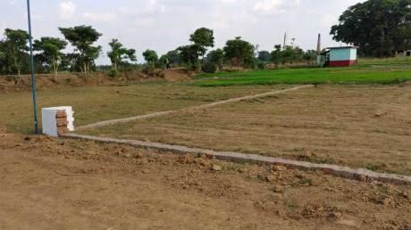 1250 sqft, Plot in Builder Project Naubatpur Bikram Road, Patna at Rs. 8.1250 Lacs