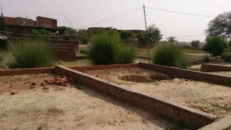 1000 sqft, Plot in Builder Kashiyana Phaphamau Road, Allahabad at Rs. 6.5000 Lacs
