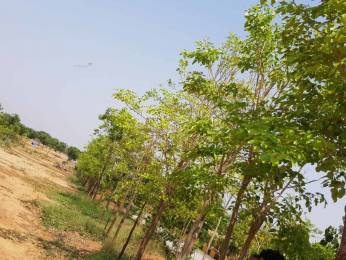 1800 sqft, Plot in Builder Jsr suncity Yadagirigutta, Nalgonda at Rs. 3.6000 Lacs