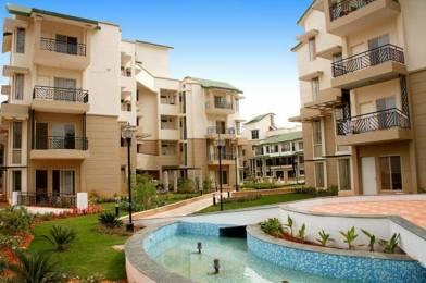 1450 sqft, 3 bhk Apartment in Prestige Greenwoods CV Raman Nagar, Bangalore at Rs. 38000