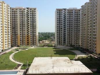 600 sqft, 1 bhk Apartment in Avj Heightss Zeta, Greater Noida at Rs. 22.0000 Lacs