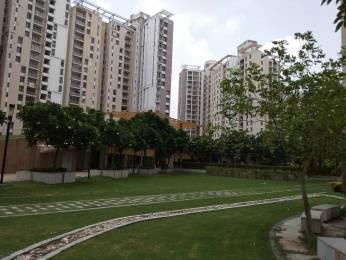 1695 sqft, 3 bhk Apartment in Unitech Horizon PI, Greater Noida at Rs. 53.0000 Lacs