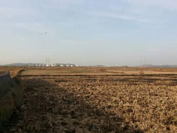 5000 sqft, Plot in Builder sky garuda developers Uran, Mumbai at Rs. 14.0000 Lacs
