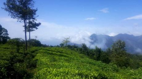 4360 sqft, Plot in Builder EGAM PROJECTS Coonoor, Ooty at Rs. 10.0000 Lacs