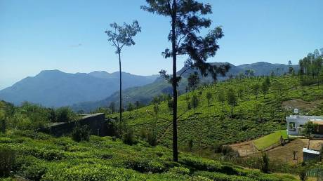 2180 sqft, Plot in Builder Project Ooty Main, Ooty at Rs. 5.0000 Lacs