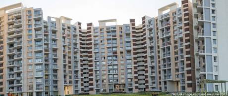 1773 sqft, 3 bhk Apartment in Mahindra Antheia Pimpri, Pune at Rs. 1.1900 Cr