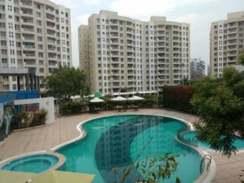 1315 sqft, 2 bhk Apartment in Vascon Forest County Kharadi, Pune at Rs. 99.0909 Lacs