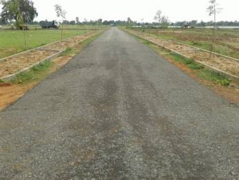 1800 sqft, Plot in Swathi Neeladhri Township Bhogapuram, Visakhapatnam at Rs. 11.0000 Lacs
