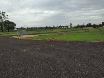 1800 sqft, Plot in Builder Parulia Plot Kamalpur Road, Durgapur at Rs. 7.1200 Lacs