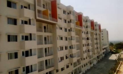 875 sqft, 2 bhk Apartment in Sipani Bliss Chandapura, Bangalore at Rs. 11000