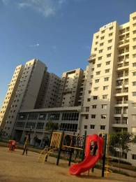 1027 sqft, 2 bhk Apartment in Salarpuria Sattva Laurel Heights Jalahalli, Bangalore at Rs. 18000
