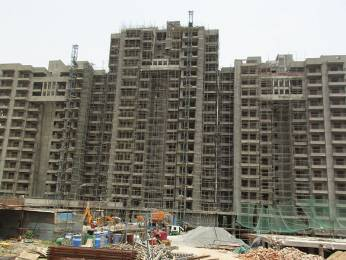 1210 sqft, 2 bhk Apartment in Ashiana Mulberry Sector 2 Sohna, Gurgaon at Rs. 56.0000 Lacs