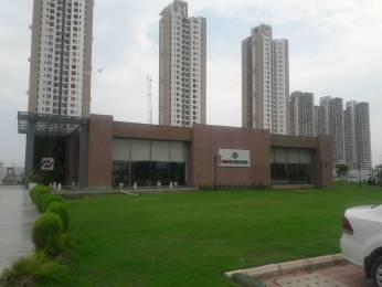 1100 sqft, 2 bhk Apartment in Hero Homes Gurgaon Sector 104, Gurgaon at Rs. 65.0000 Lacs