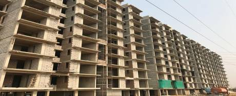 438 sqft, 1 bhk Apartment in AVL AVL 36 Sector 36A, Gurgaon at Rs. 14.0000 Lacs