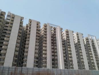 1000 sqft, 3 bhk Apartment in Signature Solera Sector 107, Gurgaon at Rs. 46.0000 Lacs