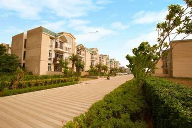 1640 sqft, 3 bhk BuilderFloor in Omaxe Silver Birch Mullanpur, Mohali at Rs. 60.0000 Lacs