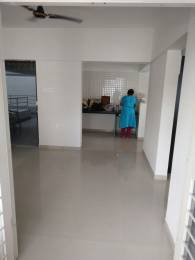 550 sqft, 1 bhk Apartment in Calyx Majestique and K Developers Vanalika Apartments Pirangut, Pune at Rs. 5000