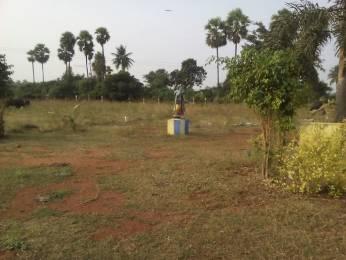 900 sqft, Plot in Builder Vinoos gardens AGIRIPALLI, Vijayawada at Rs. 3.5000 Lacs