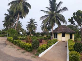 1620 sqft, Plot in Bhoomatha Amaravati Green City Modavalasa, Visakhapatnam at Rs. 12.6000 Lacs