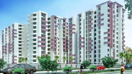 1400 sqft, 3 bhk Apartment in Builder Project TDI City Kundli, Sonepat at Rs. 17000
