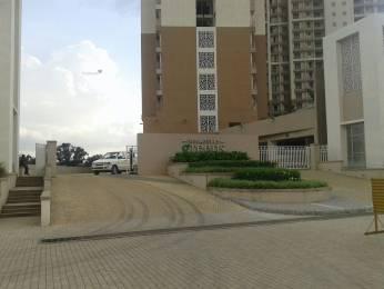 1726 sqft, 3 bhk Apartment in Indiabulls Greens Panvel, Mumbai at Rs. 1.1200 Cr