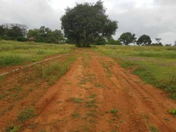 1200 sqft, Plot in Builder Project KRS Road, Mysore at Rs. 15.0000 Lacs