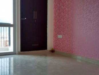 1135 sqft, 2 bhk Apartment in Prateek Laurel Sector 120, Noida at Rs. 13500