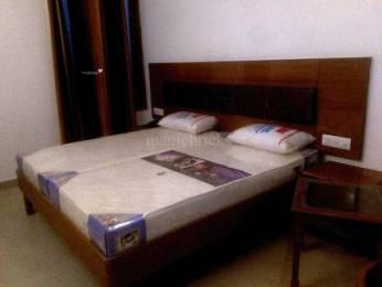 955 sqft, 2 bhk Apartment in Prateek Laurel Sector 120, Noida at Rs. 13000