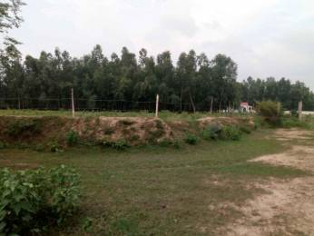 1000 sqft, Plot in Vanshika Vanshika City Bhaisamau, Lucknow at Rs. 2.9900 Lacs