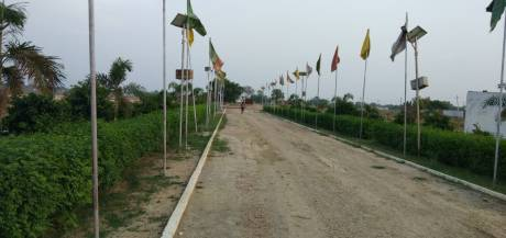 1000 sqft, Plot in Builder Darshi Rajapur, Dhanbad at Rs. 6.5100 Lacs