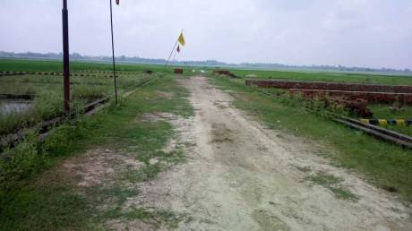 1000 sqft, Plot in Builder darshi GT Road, Dhanbad at Rs. 6.5100 Lacs