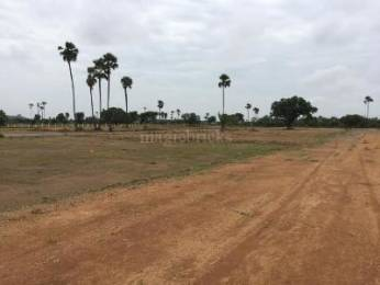 3038 sqft, Plot in Builder Project Othakkadai Kadachanendhal Road, Madurai at Rs. 15.1900 Lacs