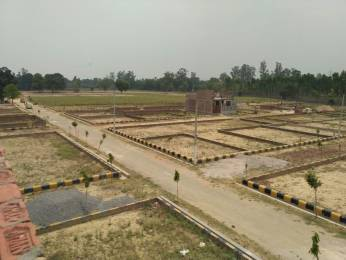 1750 sqft, Plot in Anam Estate Juggaur, Lucknow at Rs. 21.8750 Lacs