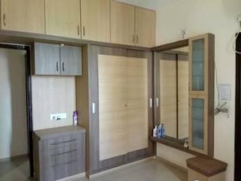 1900 sqft, 3 bhk Apartment in Builder Project old padra road, Vadodara at Rs. 25000