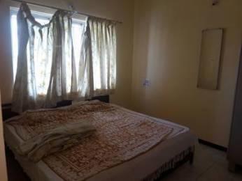 700 sqft, 1 bhk Apartment in Builder Project Akota, Vadodara at Rs. 5000