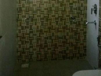 600 sqft, 1 bhk Apartment in Builder Project Akota, Vadodara at Rs. 8500