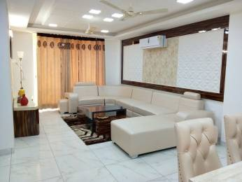220 sqft, 1 bhk Apartment in Emaar Palm Drive Sector 66, Gurgaon at Rs. 10.0000 Lacs