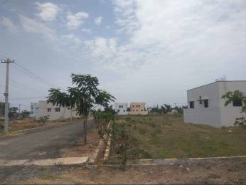 11250 sqft, Plot in Mahalakshmi Grand Mangalam, Tirupati at Rs. 11.7500 Lacs