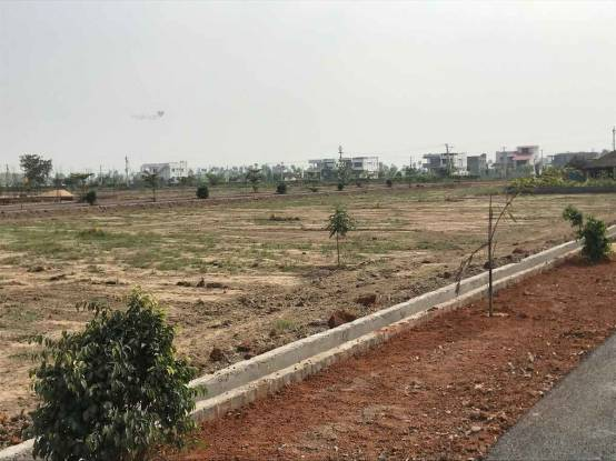 1800 sqft, Plot in Builder sai sri avenue Dhanalakshmi Puram, Nellore at Rs. 12.5000 Lacs