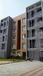 1487 sqft, 3 bhk Apartment in Builder Project Yadava Street, Chennai at Rs. 1.2300 Cr