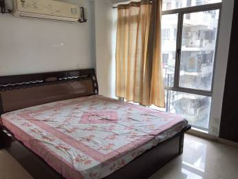 1800 sqft, 3 bhk Apartment in Builder Project Shastri Nagar, Jaipur at Rs. 30000