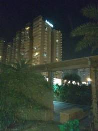 1075 sqft, 2 bhk Apartment in Ajnara Grand Heritage Sector 74, Noida at Rs. 12000