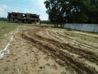 1000 sqft, Plot in Builder avhinives Nirsa Road, Dhanbad at Rs. 4.0100 Lacs