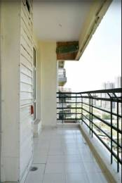 1623 sqft, 3 bhk Apartment in Gaursons Gaur Grandeur Sector 119, Noida at Rs. 18000