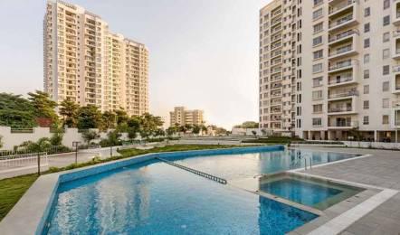 663 sqft, 1 bhk Apartment in TCG The Crown Greens Hinjewadi, Pune at Rs. 49.0000 Lacs